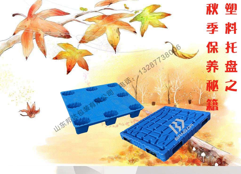 秋天塑料托盘保养